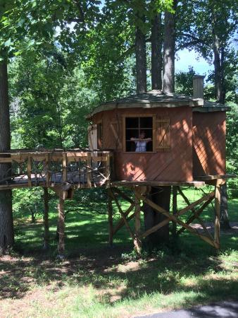 Tyler Arboretum : Tyler arb
