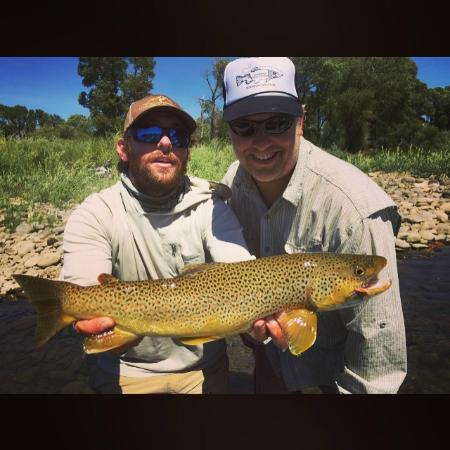 Montana Troutfitters - Day Tours: Ray Bernardo's client got this huge brown fishing hoppers!