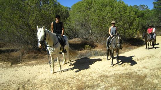 Pinetrees Horse Riding: On the horses!