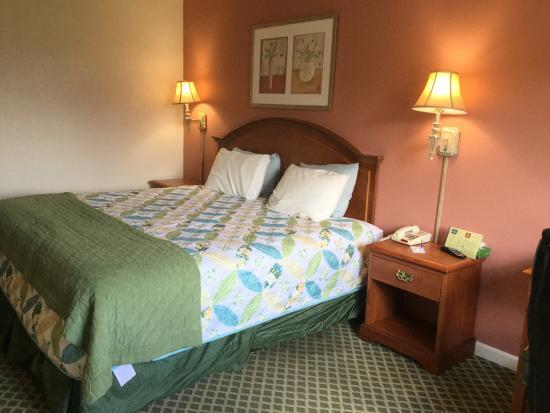 Americas Best Value Inn : 1 King Room
