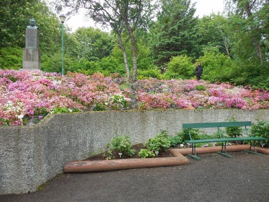 Arctic Botanical Gardens Lystigardurinn Pretty