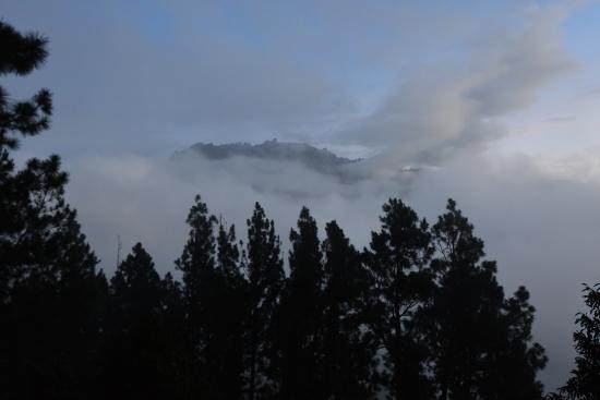 Kinabalu Park: 雲間のキナバル山 雲間のキナバル山 - Picture of Ki