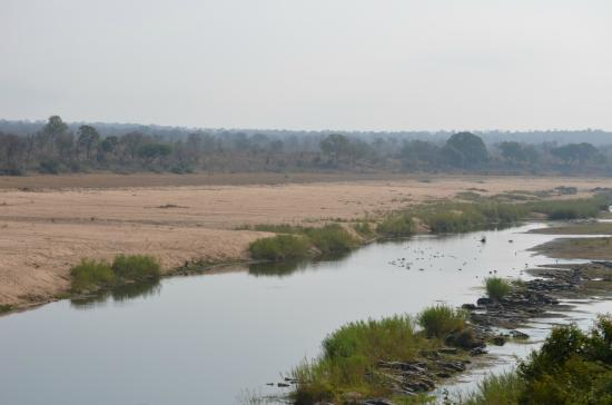 Ngwenya Lodge : Kruger view from stoep at Ngwenya