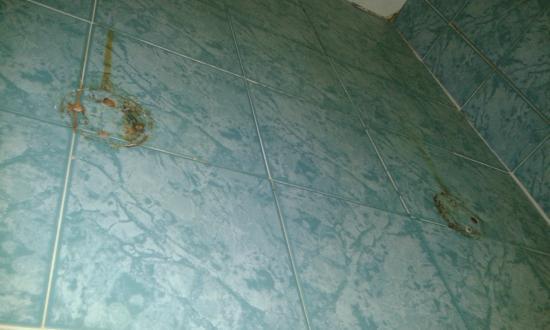 hotel club eloro parete bagno