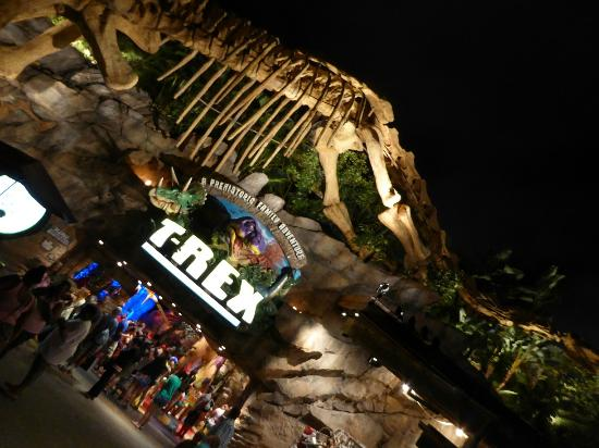 Picture of t rex orlando tripadvisor for T rex location
