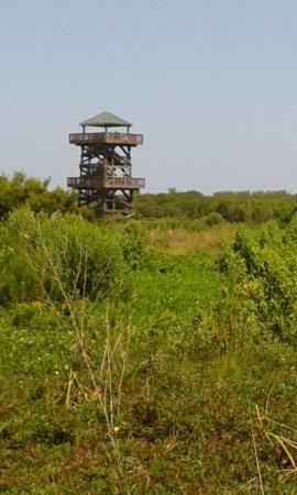 Bradenton, Floride : The Viewing Tower
