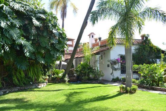 Picture of casa de las palmas taxco tripadvisor - Casa activa las palmas ...