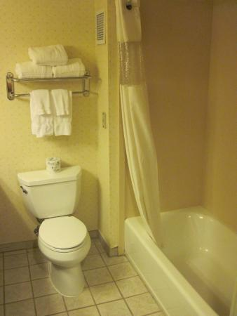 San Mateo, Californie : Bathroom of Room #310 (26/July/15).
