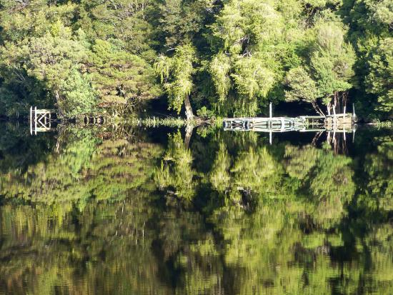 Risby Cove: Reflections abound on the Gordon River cruise