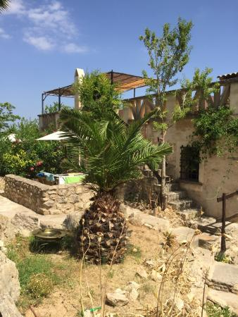 Photo of Finca Son Torrat Petra