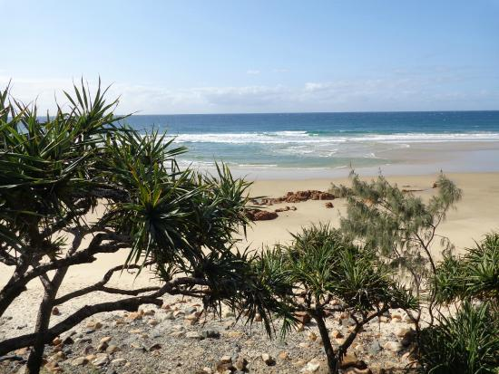 View of Coolum beach from the boardwalk
