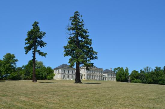 Bordeaux Saveurs : The beautiful Chateau Phelan Segur, a must visit!