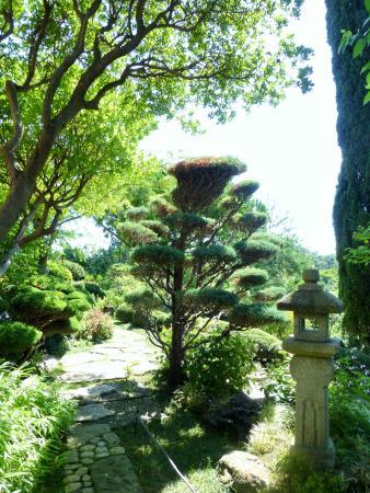 Foto de jardin zen d 39 erik borja beaumont monteux entr e for Entree jardin zen