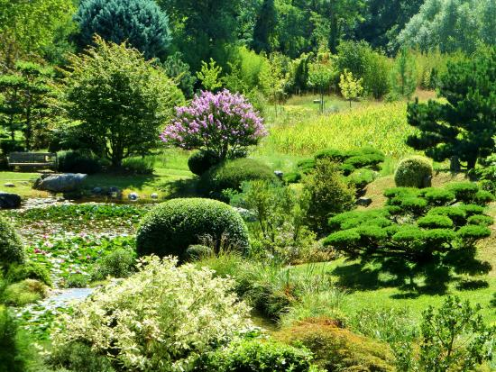 Bassin vu du haut 2 picture of jardin zen d 39 erik borja beaumont mont - Jardin zen avec bassin ...