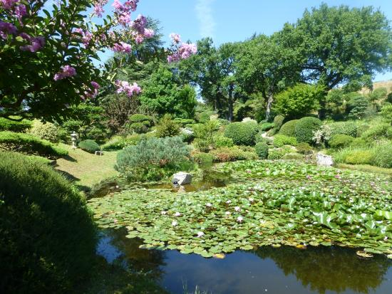 Bassin 5 photo de jardin zen d 39 erik borja beaumont monteux tripadvisor - Beaumont monteux jardin zen ...