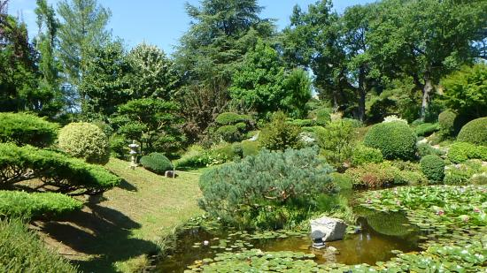 Bassin 5 picture of jardin zen d 39 erik borja beaumont monteux tripa - Jardin zen avec bassin ...