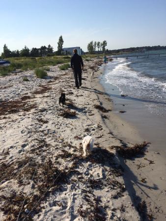 Nyborg Strandcamping Aps