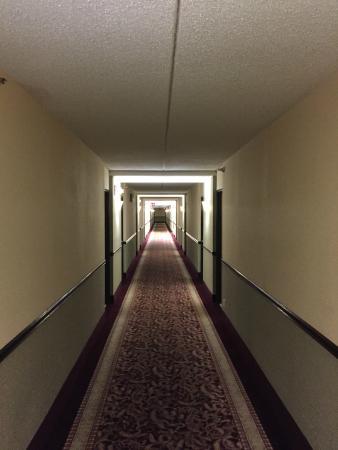 Best Western Naperville Inn: Shining anybody ??