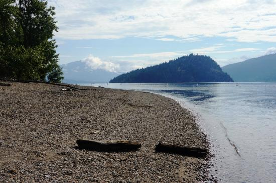 Shuswap Lake Provincial Park: Nice Beach Area