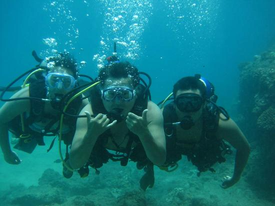 Picture Of In2Scuba Diving Maui Dive