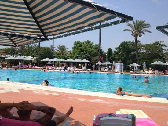 Belconti Resort Hotel: Бассейн