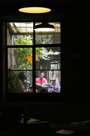 Gato Vadio Library