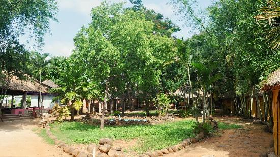 The Gopi Island