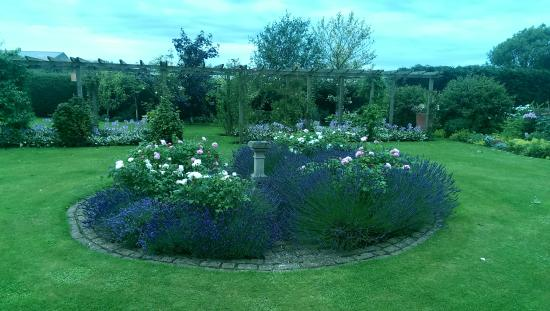 Redfoot Lea Bed and Breakfast : Garden