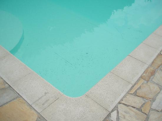 Entretien piscine foto di villa verganti veronesi for Entretien piscine