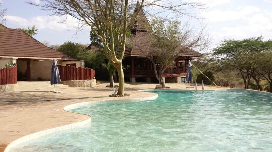 Samburu Simba Lodge : swimming pool from where you can see the elephants and giraffes