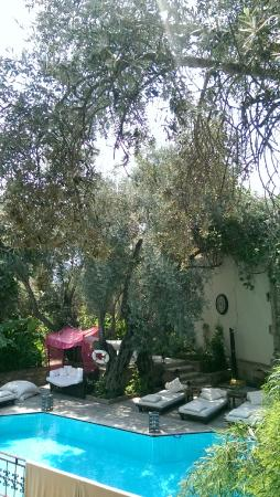 Jade Residence: Сад