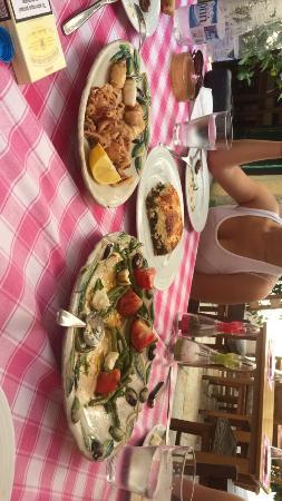 Marina's Tavern: Moussaka,  salade haricots verts, calamars frits