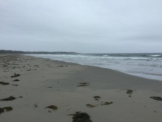 Clam Harbour Beach