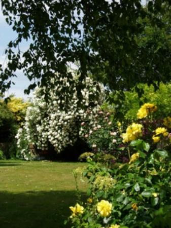 Sutton St Nicholas, UK: Garden at Pool House