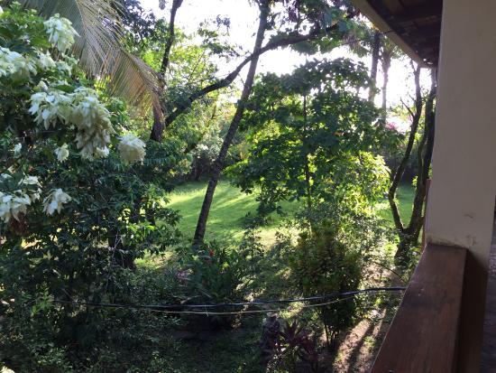 Puerto Cabezas, Nicaragua: El jardín