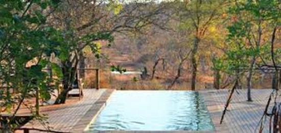 Toro Yaka Bush Lodge: Piscina