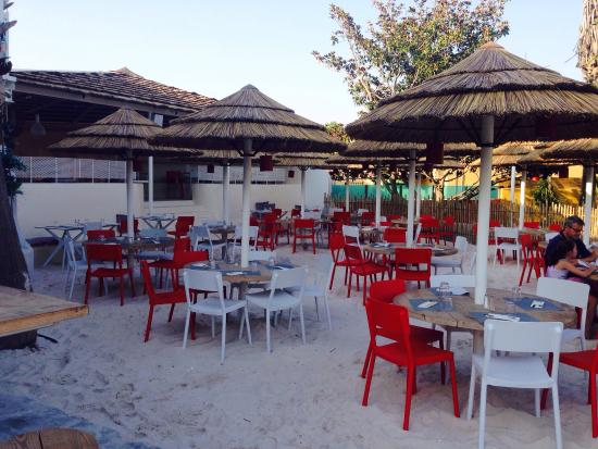 Piscine beach bar et terrasse show picture of camping for Camping blonville sur mer avec piscine