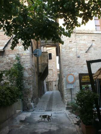Palazzo Bocci: Spello Perugia