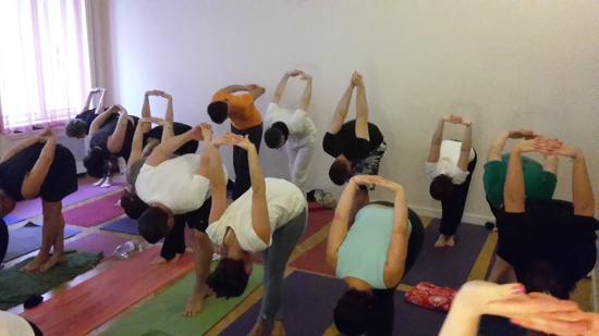 ASRAM Yoga Pest