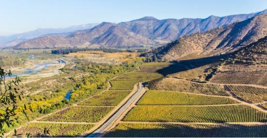 Maipo Valley Wine Tours