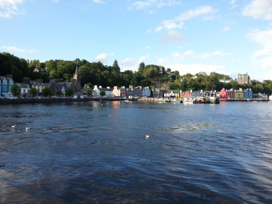 Brockville Bed and Breakfast : Tobermory.