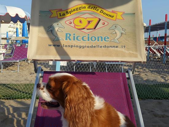 ريتشوني, إيطاليا: La Spiaggia delle Donne