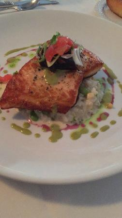 Black Duck on Sunset : Salmon