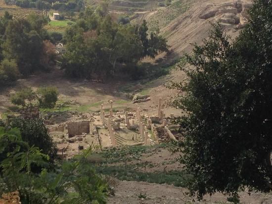 Pella Rest House: El yacimiento arqueologico desde la terraza del restaurante.