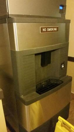 Rodeway Inn & Suites Madison-Northeast: Ice