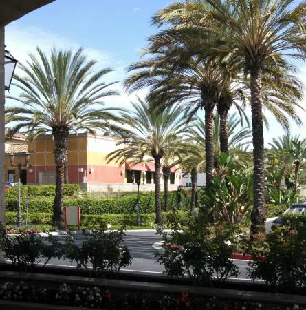 Ayres Hotel Laguna Woods: a partial view of the parking area