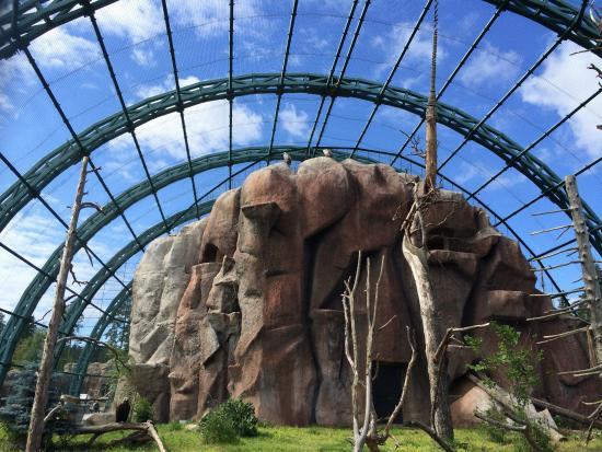 Udmurt Zoo