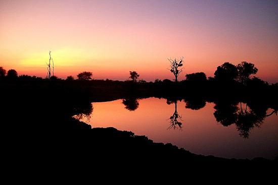 Bateleur Main & Mobile Camp: Sunset at on game drive