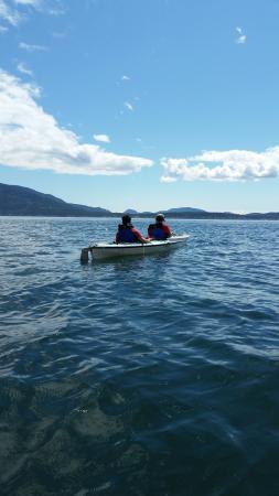Shearwater Kayak Tours: Sucia Island Kayaking tour