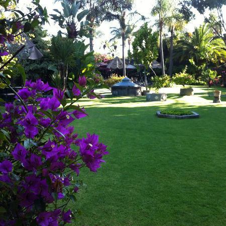 Jardines hermosos picture of las calandrias atlixco for Fotos de jardines bonitos